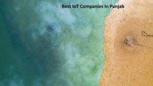 Best IoT Companies In Punjab